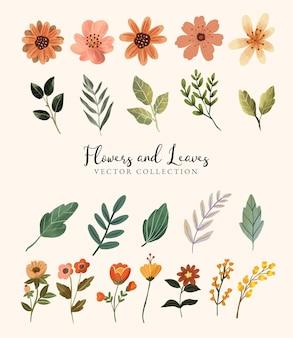Collezione di fiori e foglie per la primavera