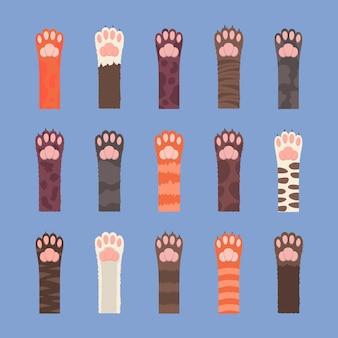 Set di zampe di gatti multicolori soffici