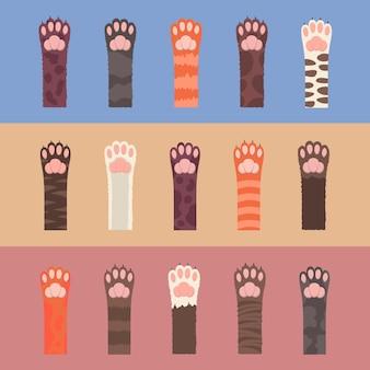 Set di zampe di gatti multicolori lanuginosi