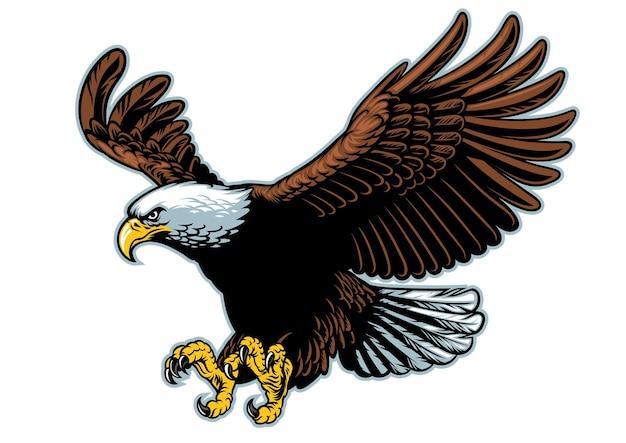 Aquila calva volante nell'illustrazione piana di stile dettagliato