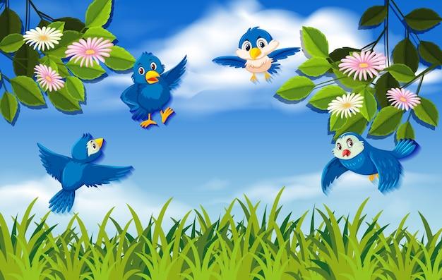 Uccelli in volo nella natura