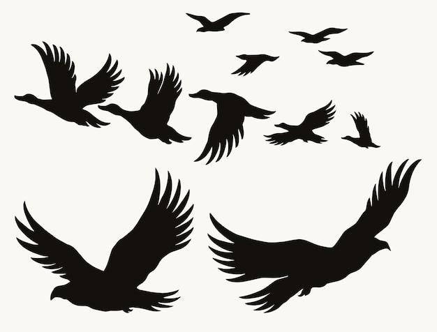Concetto vintage di sagome di uccelli in volo con aquile di anatre e gabbiani isolati