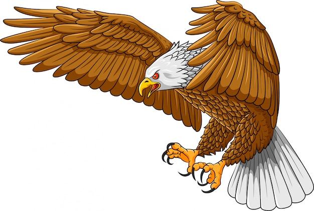 Fumetto di logo della mascotte dell'aquila di volo