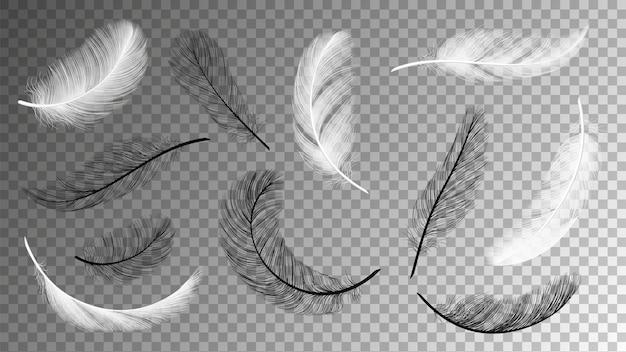 Collezione di piume volanti. caduta di piume bianche nere isolate su sfondo trasparente. insieme di vettore del piumaggio degli uccelli. volare soffice in bianco e nero, illustrazione di piume d'oca