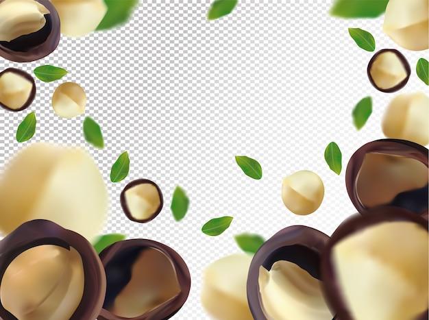 Macadamia volante con foglia verde su sfondo trasparente. dadi realistici 3d ..
