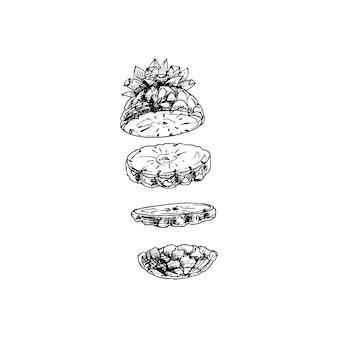 Pezzi volanti di ananas fresco vector vintage cova illustrazione nera isolata su white