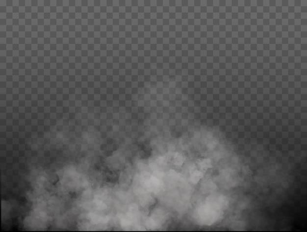 Nebbia o fumo isolato trasparente effetto speciale bianco vettore nuvolosità nebbia o smog sfondo vec...