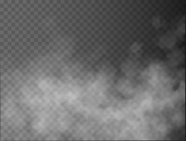 Nebbia o fumo isolato trasparente effetto speciale bianco vettore nuvolosità nebbia o smog sfondo