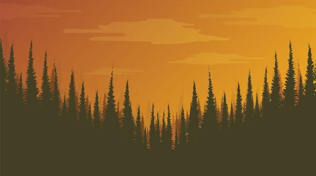 Foggy pine forest, sfondo del paesaggio, sole e concetto di alba