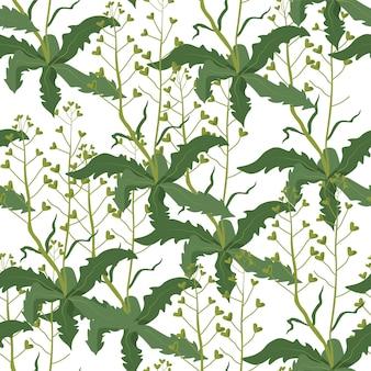 Fogliame e foglie sui rami, ornamento dell'erba