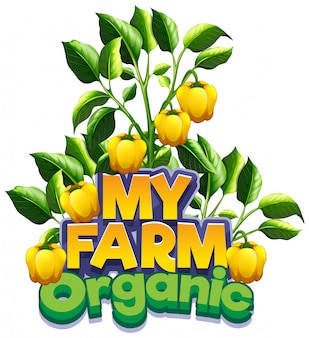 Progettazione di caratteri per la parola mia fattoria con peperoni gialli