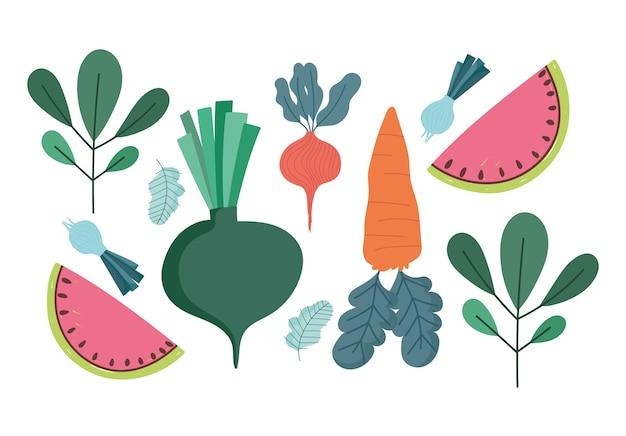 Natura cibo dieta fresca carota cipolla ravanello anguria e foglie illustrazione