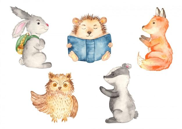 Scolari di animali della foresta. volpe, riccio, castoro, lepre, gufo