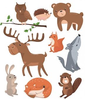 Set di animali della foresta, bosco simpatico gufo animale uccello, orso, riccio, cervo, scoiattolo, lupo, lepre, volpe, castoro cartoon illustrazioni