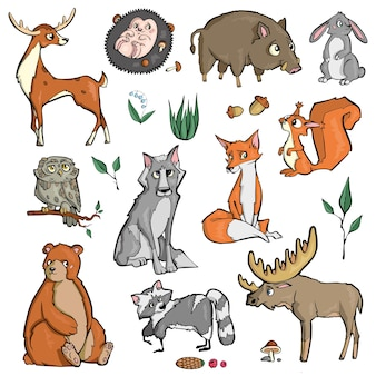 Animali della foresta su sfondo bianco simpatico cartone animato