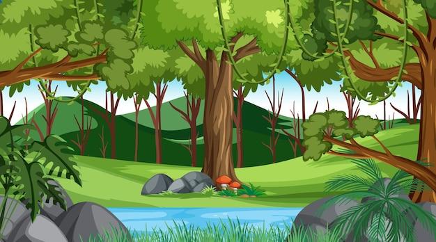 Foresta nella scena del paesaggio diurno