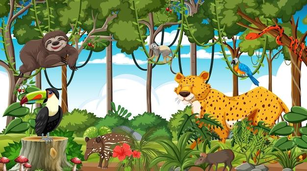 Foresta in scena diurna con diversi animali selvatici