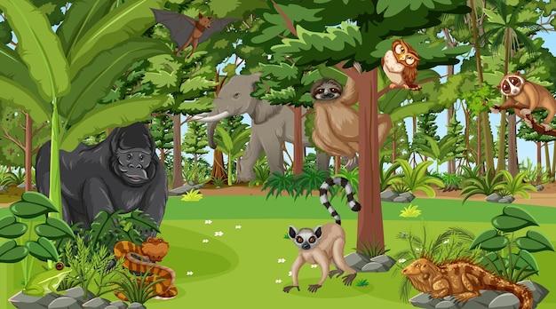 Foresta in scena diurna con molti animali selvatici diversi