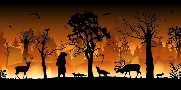 Incendio forestale. abeti rossi e querce in fiamme, piante di legno in fiamme e fumo.
