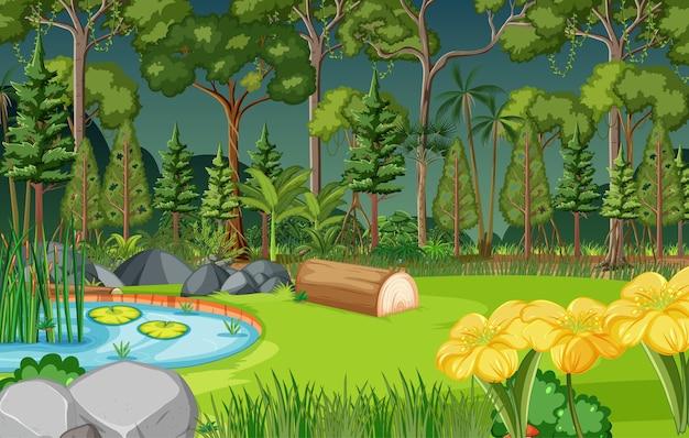 Scena della foresta con laghetto e molti alberi