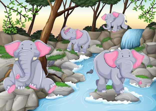 Quattro elefanti alla cascata