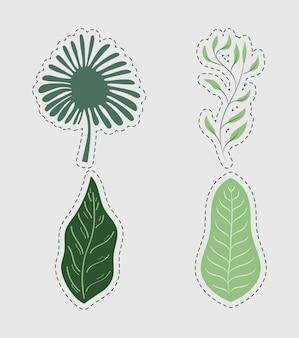 Quattro foglie di bosco