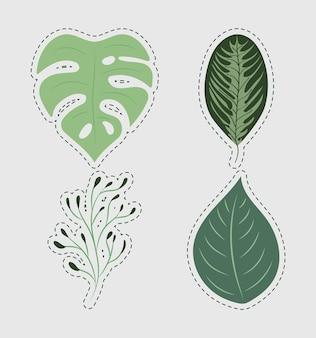 Quattro foglie di giardino