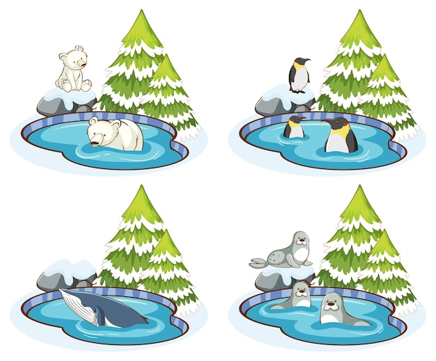 Quattro scene con molti animali