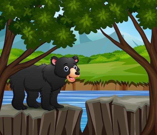 Un cartone animato volpe in piedi sulla scogliera