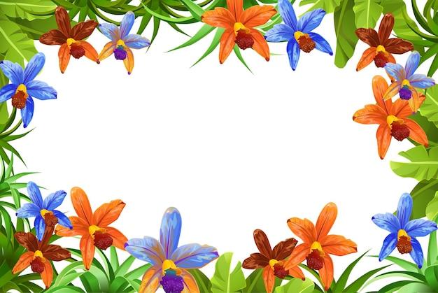 Cornice piante, foglie e fiori orchidee con sfondo bianco