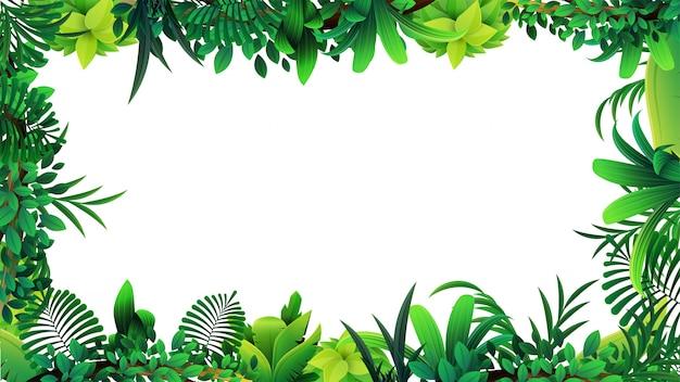 Una cornice di foglie tropicali intorno a uno spazio bianco vuoto. layout di una cornice fatta di elementi tropicali per la tua creatività