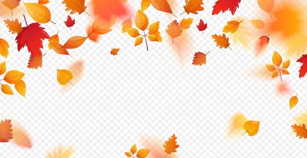 Cornice con foglie colorate cadenti e autunnali Vettore Premium