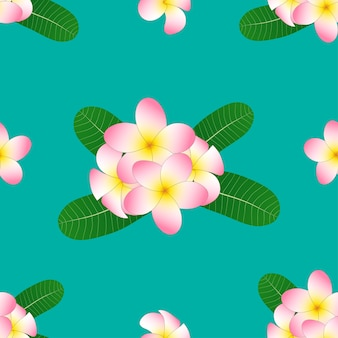 Frangipani su green teal background