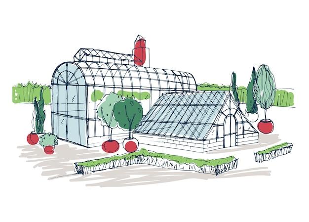 Disegno a mano libera dell'esterno del giardino botanico tropicale circondato da cespugli e alberi che crescono in vaso.