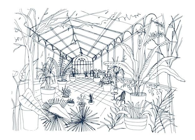 Schizzo a mano libera dell'interno del giardino botanico tropicale pieno di piante coltivate con fogliame lussureggiante