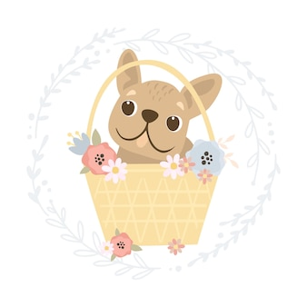 Bulldog francese in un cestino