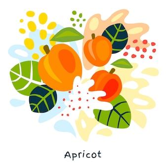 Illustrazione disegnata a mano della spruzzata del succo di frutta fresca dell'albicocca