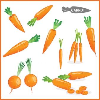 Verdura fresca della carota con le cime della carota