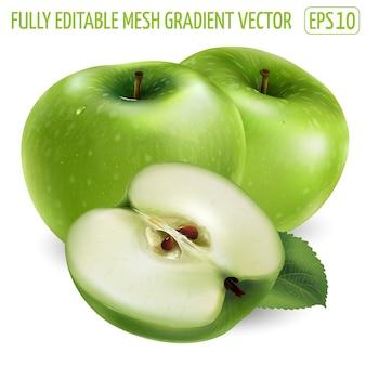 Mela verde fresca - disegno di cibo sano. illustrazione realistica.