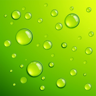 Modello di sfondo dros rugiada acqua chiara trasparente verde fresco