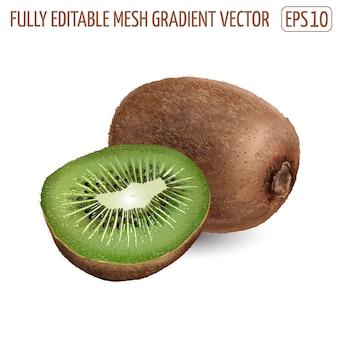 Kiwi freschi - design di cibi sani. illustrazione realistica.