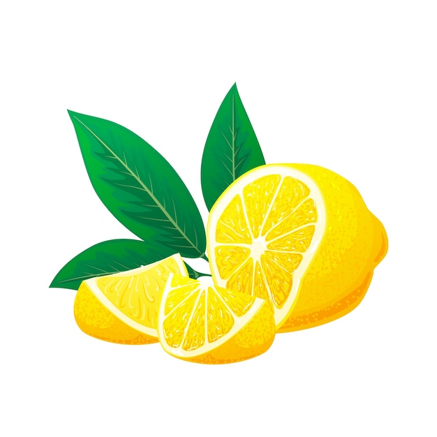 Limone fresco, fette di limone con foglie. concetto di logo. illustrazione disegnata a mano isolato su priorità bassa bianca