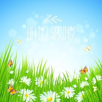 Sfondo primavera fresca con erba, denti di leone e margherite