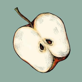 Vettore di mela matura appena affettata