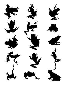 Silhouette di rana