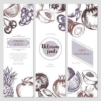 Banner di frutta - illustrazione di design moderno disegnato a mano di vettore con copyspace per il tuo logo. uva, ciliegie, ananas, fragola, noci di cocco, mela.