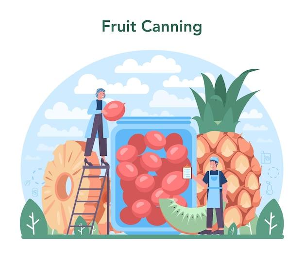 Industria frutticola e di trasformazione. idea di agricoltura e coltivazione. selezione del raccolto biologico. produzione di frutta secca, succhi e frutta sciroppata. illustrazione vettoriale piatto isolato