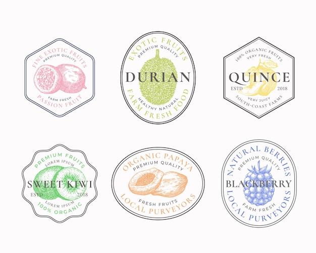 Distintivi per cornici di frutti e bacche o collezione di modelli di logo disegnati a mano papaya kiwi durian mele cotogne e...