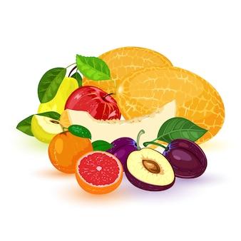 Frutti e bacche: mela, pera, mandarino, mandarino, pompelmo, prugna, melone.
