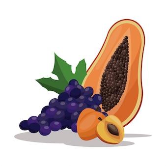 Nutrizione di frutta sana